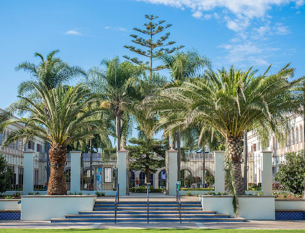 USD to Celebrate Completion of New Pedestrian Plaza