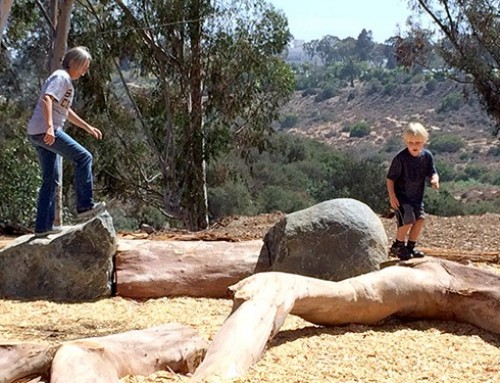 Nature play is back with new exploration area