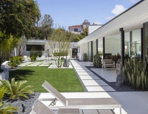 Grounded Modern Landscape Architecture Spotlighted